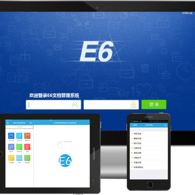 E6文档管理系统