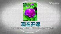 文书long8国际平台娱乐件号章的填写视频